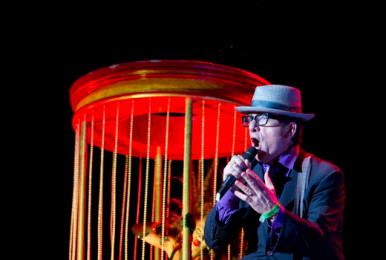 elviscostello_bypat-beaudry_003_resize